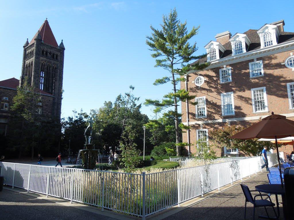 transfer application for university of illinois at urbana champaign essay