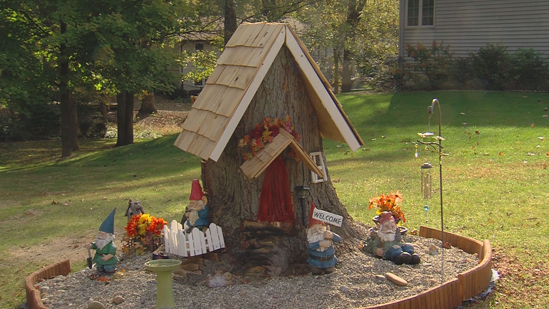 Tree stump house - Woman Creates Gnome Home From Tree Stump