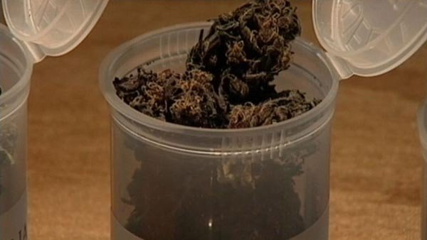 IL lawmakers propose legalizing recreational marijuana