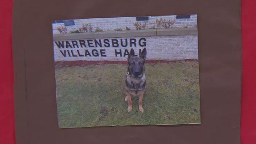 "Pictured: Warrensburg K-9 ""Brutus"""