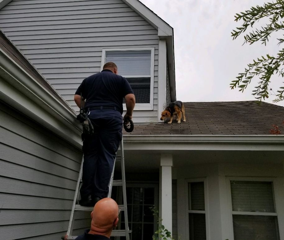 Photo: South Elgin and Countryside Fire Protection District