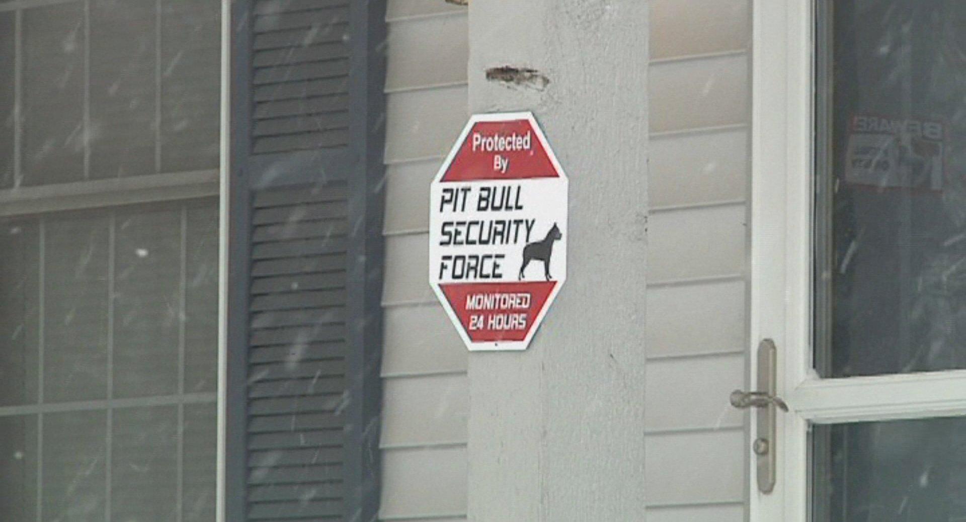 Pitbulls attack 4yearold  Wandtvcom, NewsCenter17  ~ Wand Tv Local News Headlines